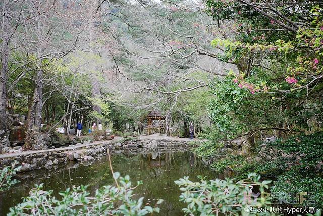 合歡山&武陵農場 (47)