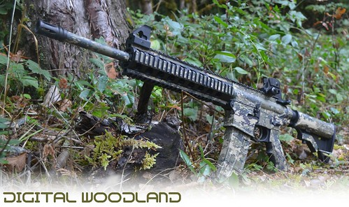 Digital Woodland AR-15