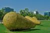 Santiago - Parque de las Osculturas Cristian Salineros Semillas