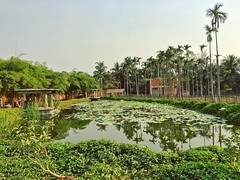 Just one of the blissful sights around the Isha Yoga Centre in Coimbatore.