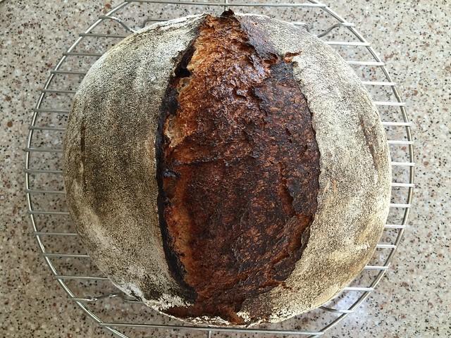 Wheat-Rye 20%