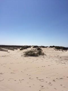 Billede af Praia da Costa Nova. costa praia portugal nova de do centro da prado barra ria aveiro nazaré região ílhavo gafanha