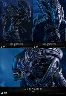 HOT-TOYS-ALIEN-WARRIOR-02