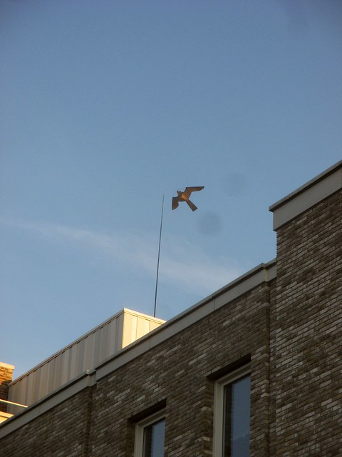 I saw kites like this on several roofs, I wish we had enough wind here to make this a thing, too.