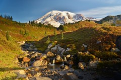 Morning at Mount Rainier