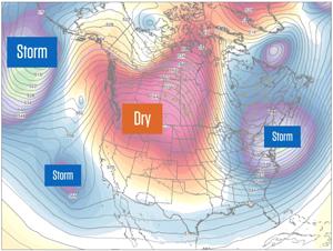 January Forecast