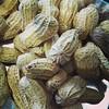 Makanan haram pada malam Maesong  (alergi protein)