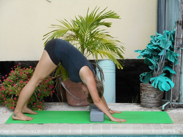 Downward Facing Dog Pose wrist block
