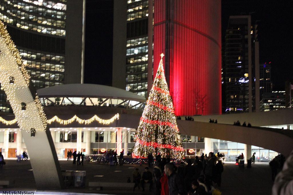 Street of Toronto (18)
