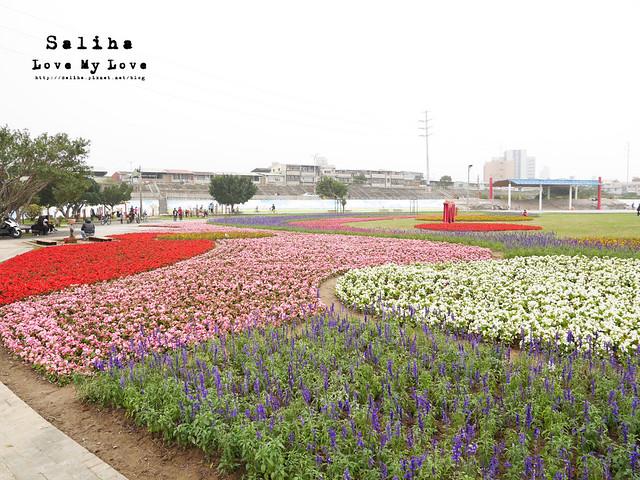 社子島溼地水鳥自行車道 (11)