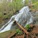 Noontootla Falls, Unnamed Tributary to Noontootla Creek, Ed Jenkins National Recreation Area, Chattahoochee National Forest, Fannin County, Georgia 1 by Alan Cressler