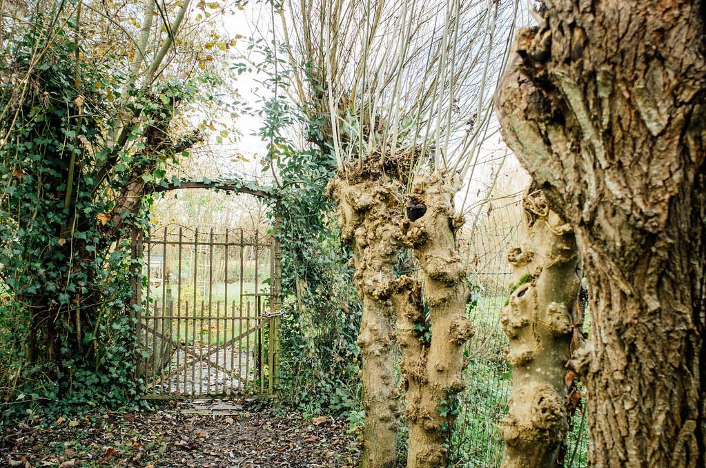 Coups de coeur à Bourges - Les marais, labyrinthe et jardin