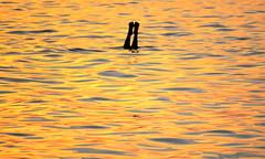 I colori del mare - The sea colors