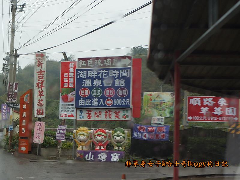 苗栗草莓大湖酒莊清安洗水坑豆腐街02