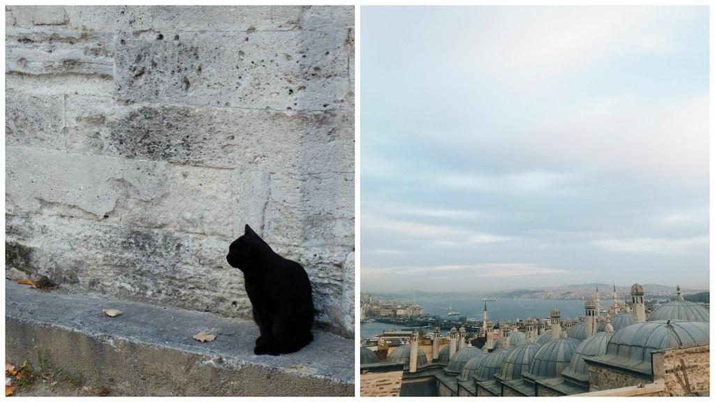10 Reasons to Visit Istanbul, Turkey