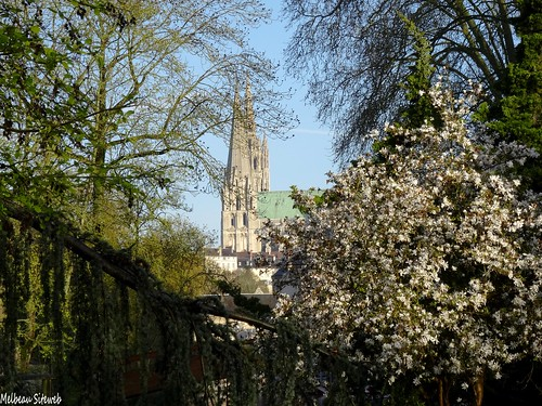 Balade matinale des bords de l'Eure : Chartres