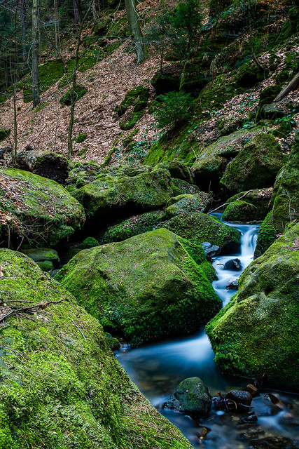 Stram and mossy rocks