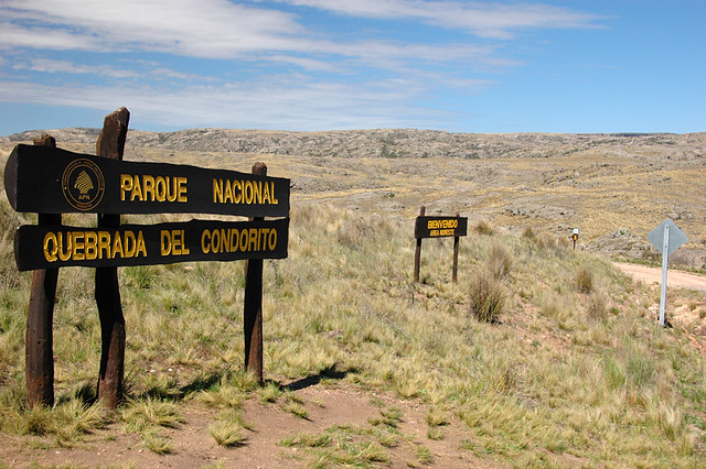 08Arg_condorGrasslands on the walk in the National Park that leads to the cliff walls