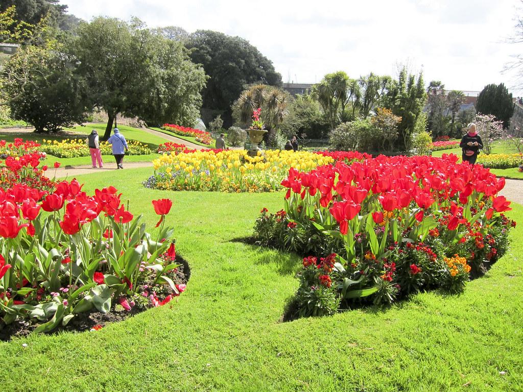 Flowers at Candie Gardens, Guernsey
