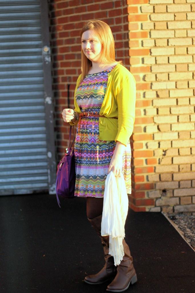 Anthropologie Flared Caraz Dress (4)