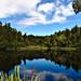 Lake Matheson by daubru