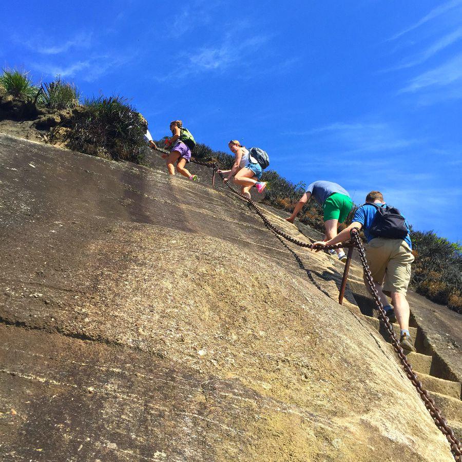 Pico da Tijuca Rock Stairs