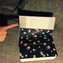 beautiful endpapers