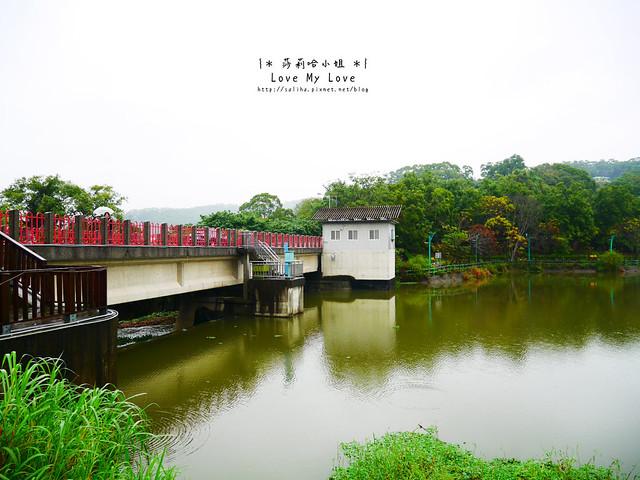 新竹一日遊景點青草湖 (3)