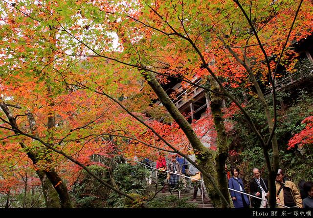 京都-永觀堂073
