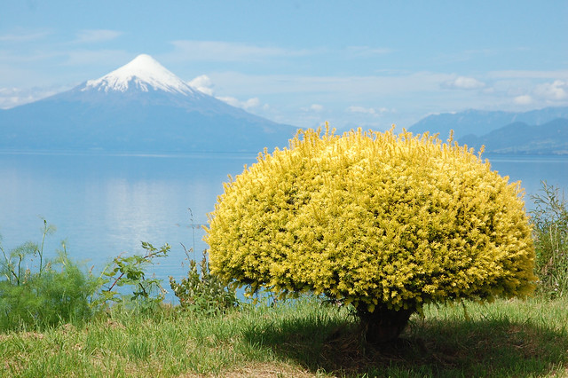Views of Volcán Osorno from Llanquihue, Chile