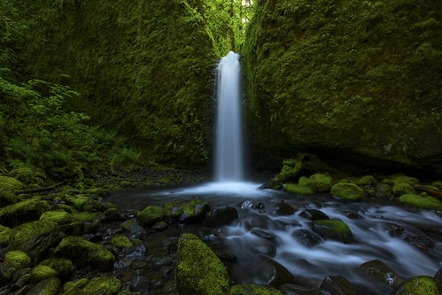 spring or columbiagorge ruckelcreek mossygrottofall
