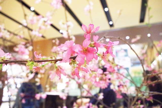 toomilog-FlowerArtExhibition2016004