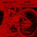 אופניים חשמליות ecofun by arieldavidov