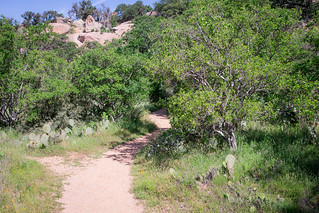 Enchanted Rock-23-2