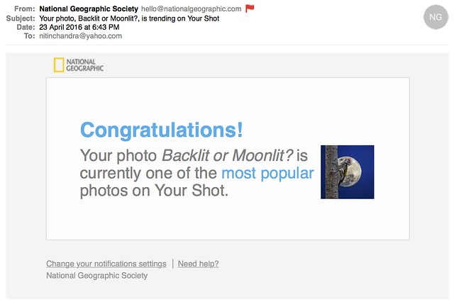Your photo Backlit or Moonlit is trending on Your Shot