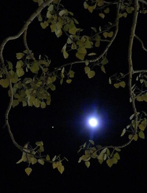Mirando a Júpiter y a la Luna
