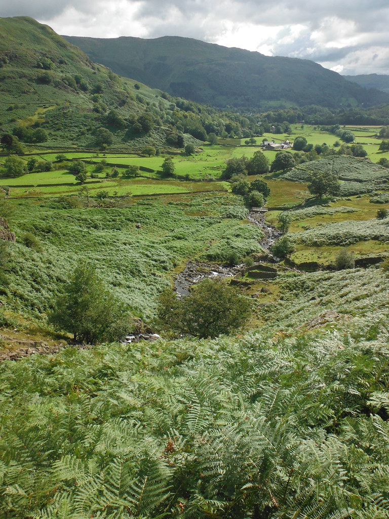 Easedale Valley 2