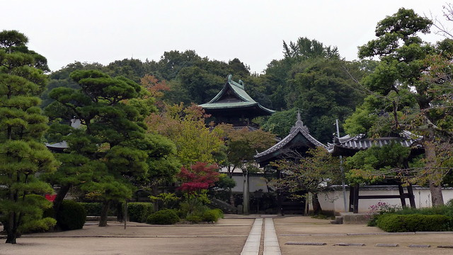 Achi Shrine - carefully sculpted trees