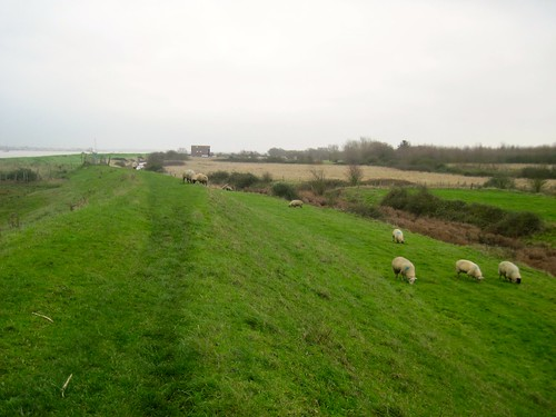 Long Holiday Walks in East Anglia