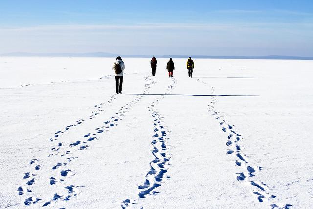Ventės ragas - Nida ledu | Pėdsakai