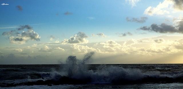..splash....