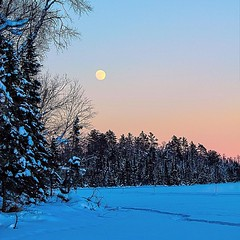January 22 moonrise over East Bearskin Lake.  #bearskinlodge #gunflinttrail #onlyinmn