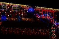 Xmas LEDs a-plenty