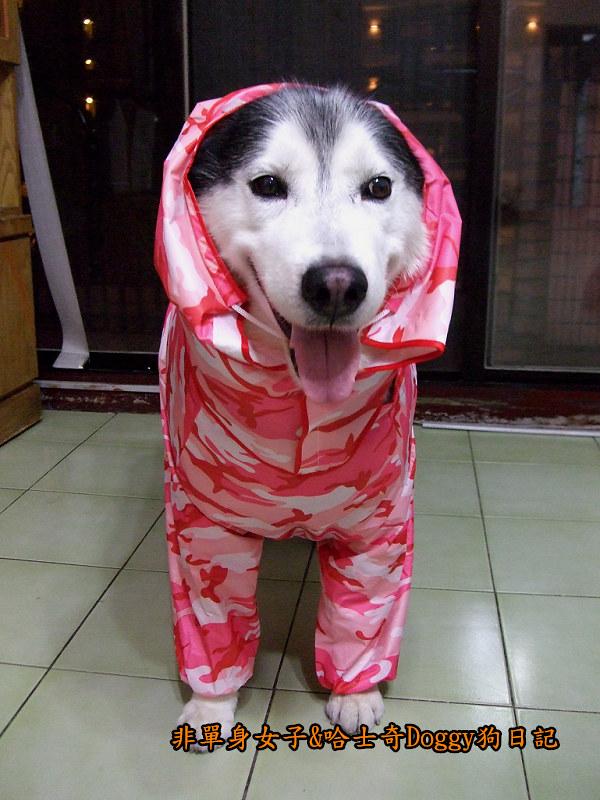 寵物雨衣迷彩服09