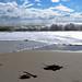 Small photo of Brittany coast