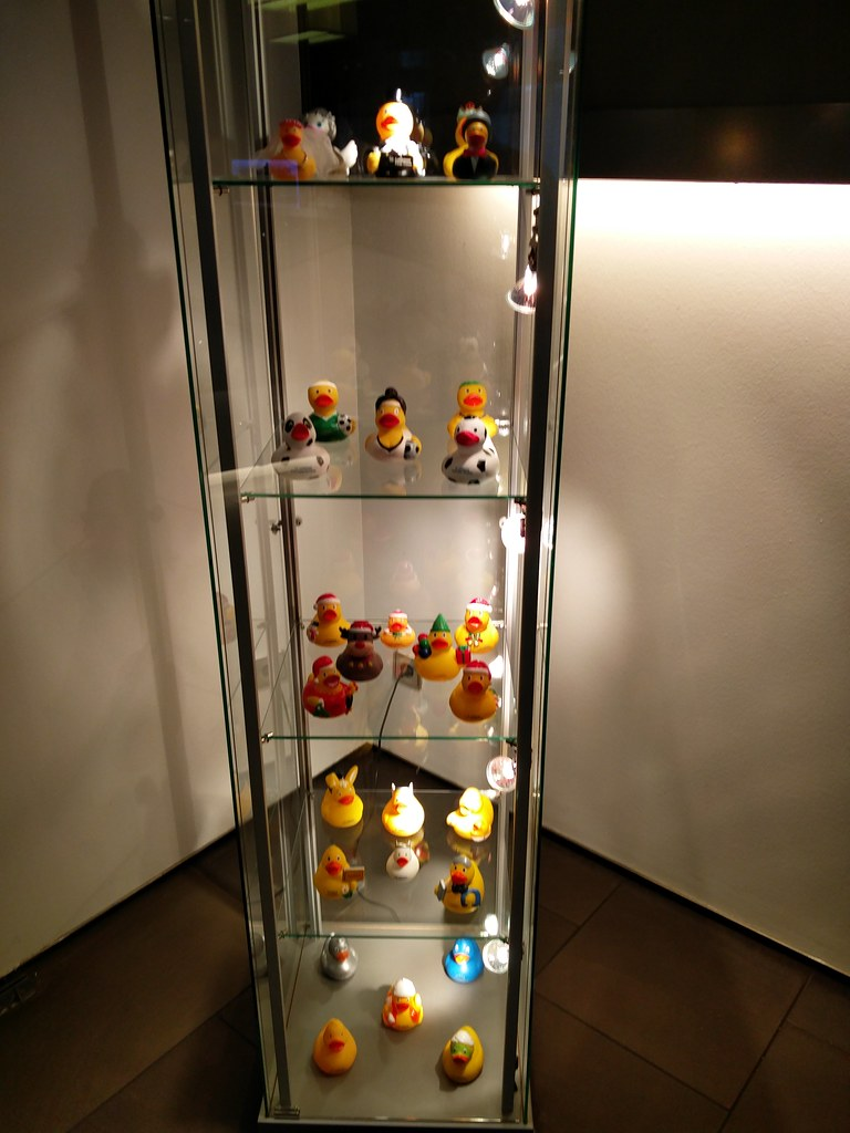 Rubber duck shelves
