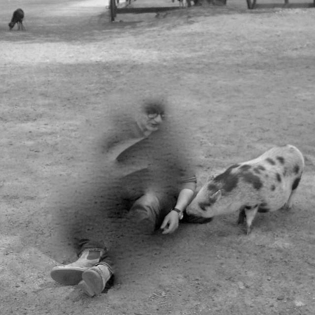 Selbst als kleiner süsser Schweinegeist