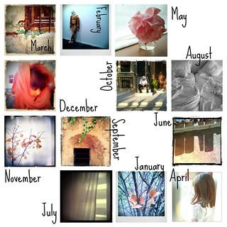 one-year-blogging