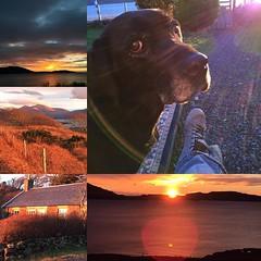 Another amazing sunset. Jan 5, 2016. #dogsofinstagram #isleofmull #scotland #uk #travel #digitalnomad