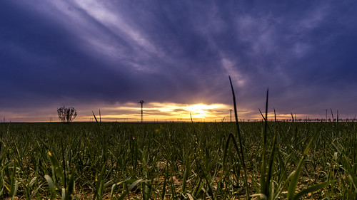 sunset sun sol field clouds landscape atardecer 28mm paisaje nubes campo nikkor albacete hierba
